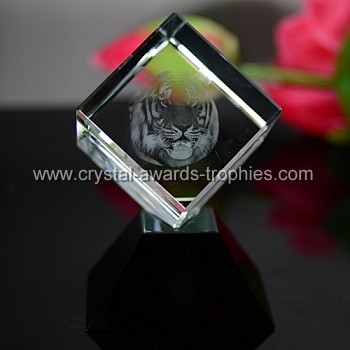 child tiger crystal award trophy