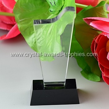 child blank award trophy plaque
